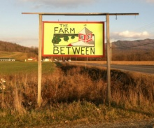 Since they started collecting in July 2013, The Farm Between has diverted 26,250 pounds of food scraps!